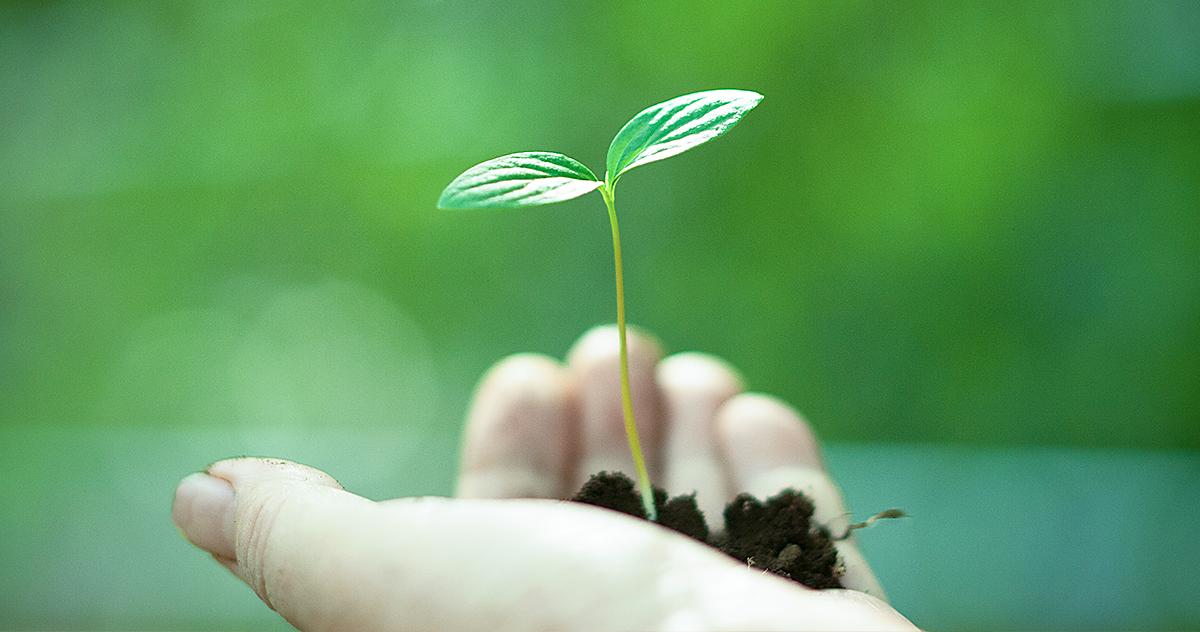 4 benefícios da sustentabilidade para clínicas